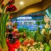 Kwiaciarnia C.H. IBI Piła
